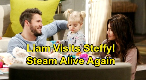 The Bold and the Beautiful Spoilers: Liam Visits Steffy, Exes Bond Tightly – 'Steam' Dream Alive Despite Hope Reunion