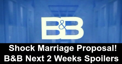 The Bold and the Beautiful Spoilers Next 2 Weeks: Stunning Marriage Proposal – Thomas's Dirty Douglas Tricks – Death For Sally News Spreads