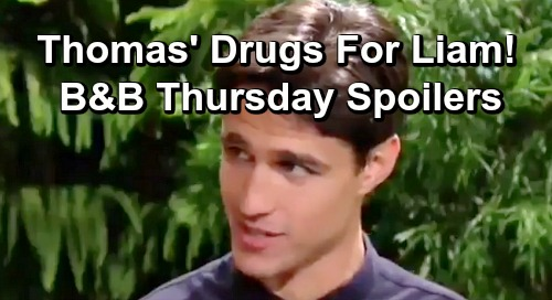 The Bold and the Beautiful Spoilers: Thursday, June 27 - Thomas Buys Drugs, Targets Liam and Steffy - Bridge Debate Hope's Future