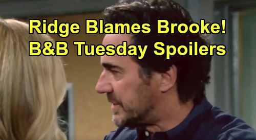 The Bold and the Beautiful Spoilers:Tuesday, August 27 - Ridge Accuses Brooke of Intentional Thomas Push - Liam Says He Deserved It