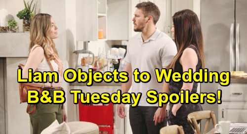 The Bold and the Beautiful Spoilers: Tuesday, July 16 - Hope's Quickie Wedding Stuns Liam - Reluctant Brooke Plans Nuptials