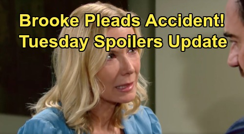 The Bold and the Beautiful Spoilers: Tuesday, August 27 Update – Liam Comforts Guilty Hope – Brooke Denies Ridge's Accusation