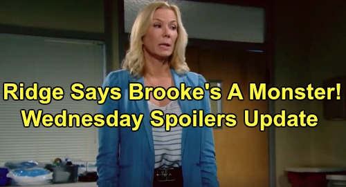 The Bold and the Beautiful Spoilers: Wednesday, August 28 Update – Ridge Thinks Brooke's a Monster – Shauna Horrified by Flo's Reality