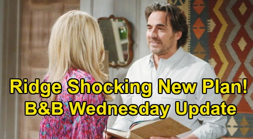 The Bold and the Beautiful Spoilers: Wednesday, April 8 Update – Ridge's New Plan Stuns Shauna - Quinn Turns Eric Against Brooke