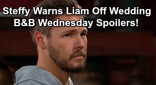 The Bold and the Beautiful Spoilers: Wednesday, July 17 - Liam Remembers Life With Hope - Steffy Warns Baby Daddy To Skip Wedding
