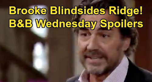The Bold and the Beautiful Spoilers: Wednesday, October 23 - Ridge Vows Douglas Stays With Thomas - Brooke's Sneaky Adoption Plan