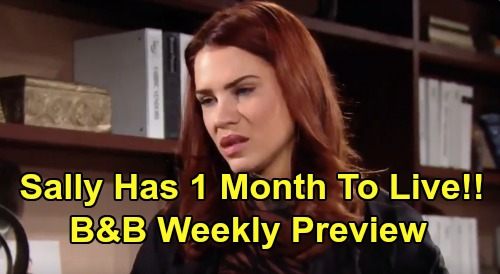 The Bold and the Beautiful Spoilers: Week of February 10 Preview – Sally Has One Month Left to Live Before Death – Wyatt Desperate