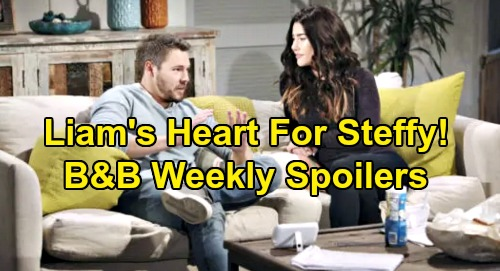 The Bold and the Beautiful Spoilers: Week of January 13 – Liam Gives Heart To Steffy – Katie's Flo Stunner – Quinn Fights Brooke