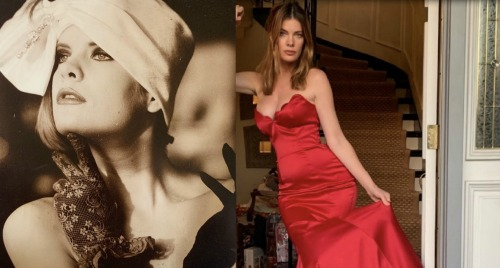 The Young and the Restless Spoilers: What Happened To Michelle Stafford - Phyllis Summers Glamour Photos