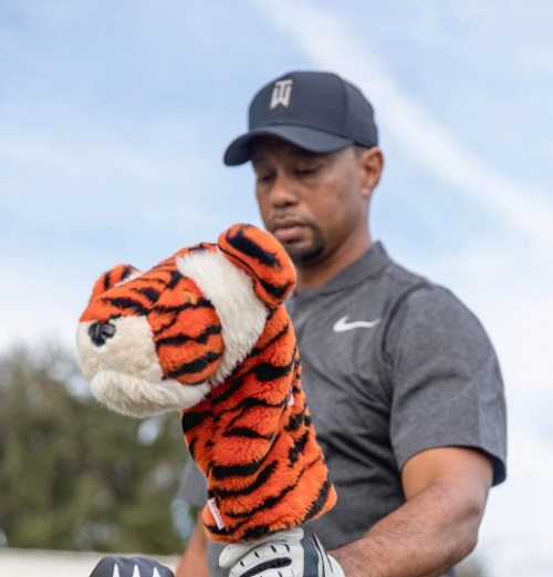 What Tiger Woods' Ex-Wife Elin Nordegren Thinks About Tiger Woods' DUI