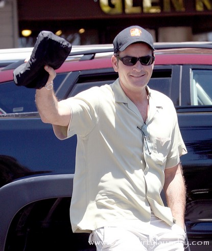 Truth Revealed About Charlie Sheen's Attempt To Go back To Work