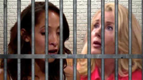 The Young and the Restless Spoilers: Crime and Punishment In Genoa City - Nikki Faces Incarceration, Meets Lily In Prison?